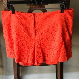 New York & Co Lace Shorts